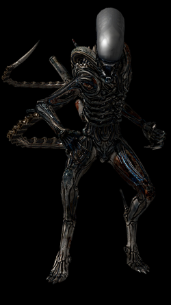 Image - Xenomorph from alien isolation by frankaster1987-d8gmbmq.png ...