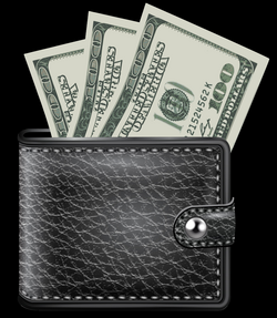 wallet transparent animated