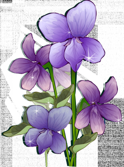 Purple Flower Transparent PNG Pictures - Free Icons and PNG Backgrounds