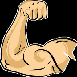 arm muscle clipart png