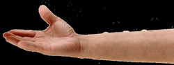 Hand arm png » PNG Image
