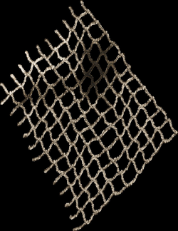 drawing net png