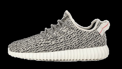 yeezy turtle dove png