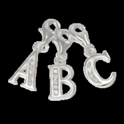 charms clip silver