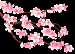 Pink Spring Branch PNG Clipart Image | Planner Happiness | Pinterest ...