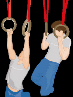 Pull-ups on Gym Rings, Strength Training - Ring Exercises - Fitstream