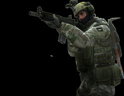 Counter Strike : Global Offensive has millions of players, are you ...