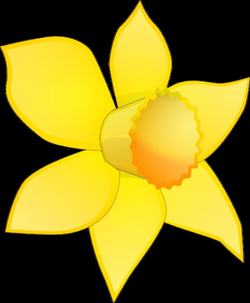 Daffodil Flower Clip Art | Daffodil Image Stripped Clip Art at Clker ...