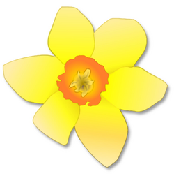 Free Daffodil Clipart - Public Domain Flower clip art, images and ...