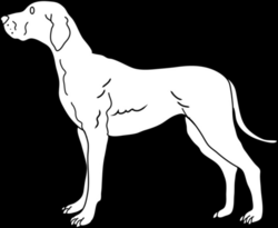 doggy drawing line
