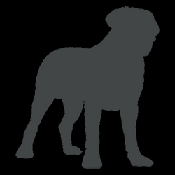 puppy svg transparent