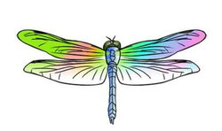 dragonfly clipart creative