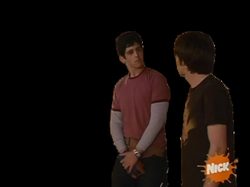 shelly transparent josh