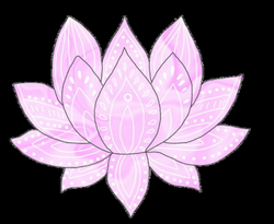 Drawing Chinese Lotus Flower Picture 1023501 Drawing Chinese Lotus
