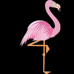 28+ Collection of Flamingo Drawing Png   High quality, free cliparts ...