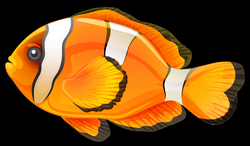 Download FISH Free PNG transparent image and clipart