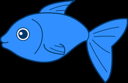 Fish In PNG | Web Icons PNG