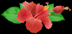 Red Flower PNG Clip Art Image - Best WEB Clipart