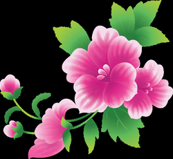 Large Pink Flowers Clipart | Gallery Yopriceville - High-Quality ...