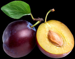 Large Plum PNG Clipart | Gallery Yopriceville - High-Quality Images ...