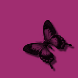 Pink Butterfly Black Glitter | Free Images at Clker.com - vector ...