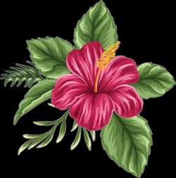 drawing paint flower