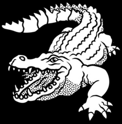 vector alligator line art