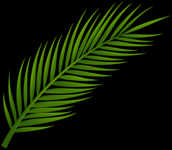 Palm Tree Leaf PNG Clip Art - Best WEB Clipart