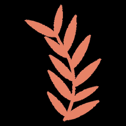 Leaves illustration drawing - Transparent PNG & SVG vector