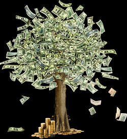Money tree PNG image