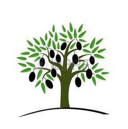 olive clipart olive plant