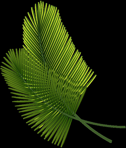 Tropical Leaves PNG Clipart Image | Craft Ideas | Pinterest ...