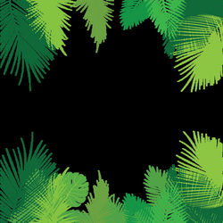 Tropical Palm Leaves PNG, Palm, Tropical Leaves, Leaves PNG and ...