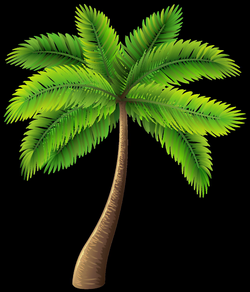 3d palm tree png, Picture #792163 3d palm tree png