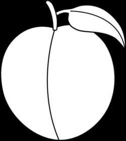 Peach clipart black and white free images 2 - Clipartix