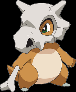Image - 104Cubone AG anime.png | Pokémon Wiki | FANDOM powered by Wikia