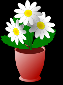 Potted Plants And Flowers Png. Elegant Gallery Image One With Potted ...