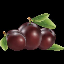 Download Plum Free PNG photo images and clipart | FreePNGImg