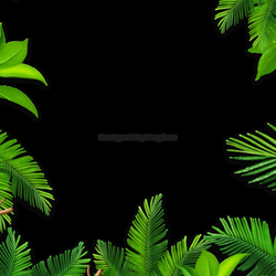 Background Green PNG Images | Vectors and PSD Files | Free Download ...