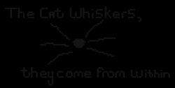 png cat quotes