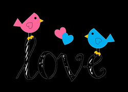 Love Birds PNG Transparent Images | PNG All