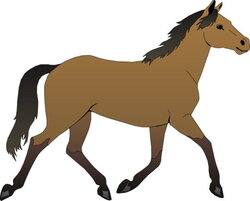 riding clipart brown horse
