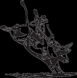 PBR Bull Riding Coloring - Get Coloring Pages | 252x250