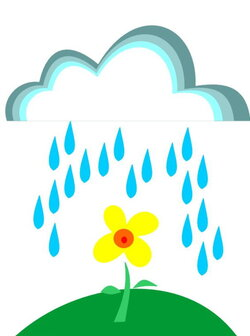 wet clipart spring