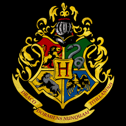 TAG : Harry Potter | Pinterest | Hogwarts, Hermione granger and ...