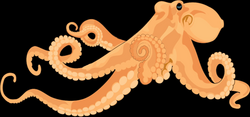 realistic clipart octopus