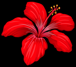 Exotic Red Flower PNG Image | Gallery Yopriceville - High-Quality ...