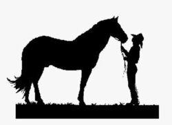 riding clipart horse trainer
