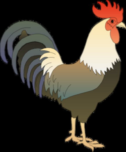 rooster clipart real