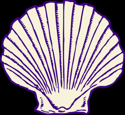 Purple Shell Clip Art at Clker.com - vector clip art online, royalty ...